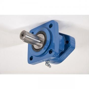Case 160558A1 Hydraulic Final Drive Motor