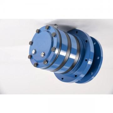 Case CX31 Hydraulic Final Drive Motor