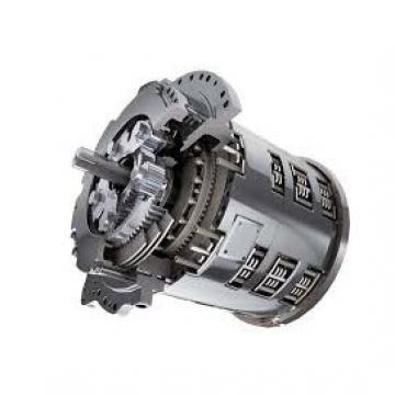 Caterpillar 323D2L Hydraulic Final Drive Motor